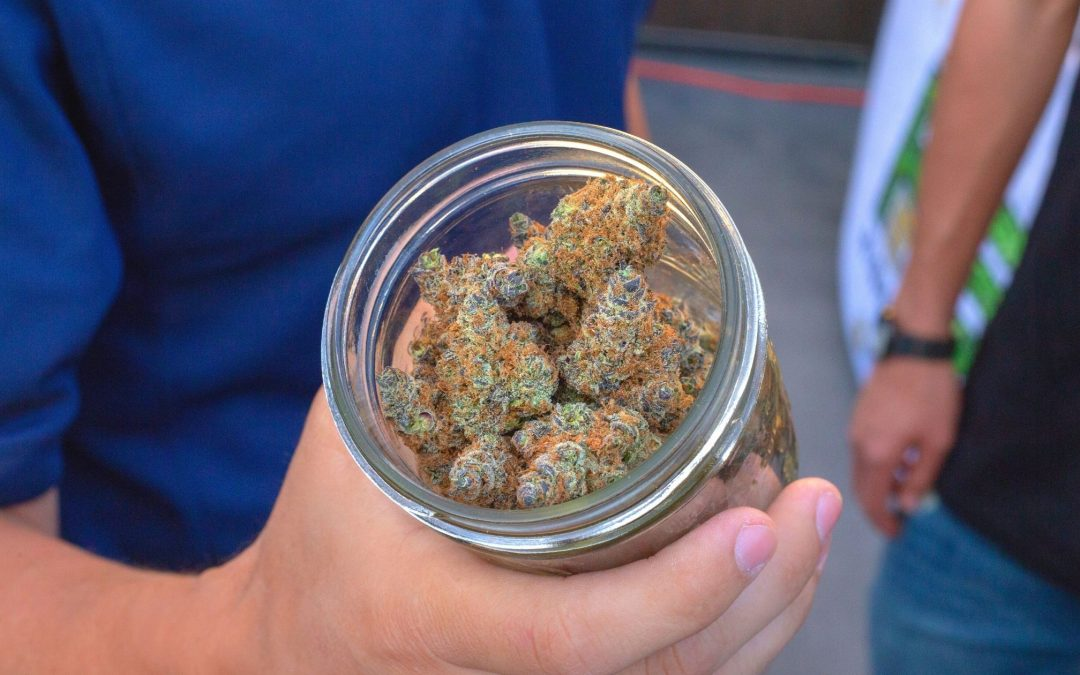 Facts About Medical Marijuana Every Beginner Should Know